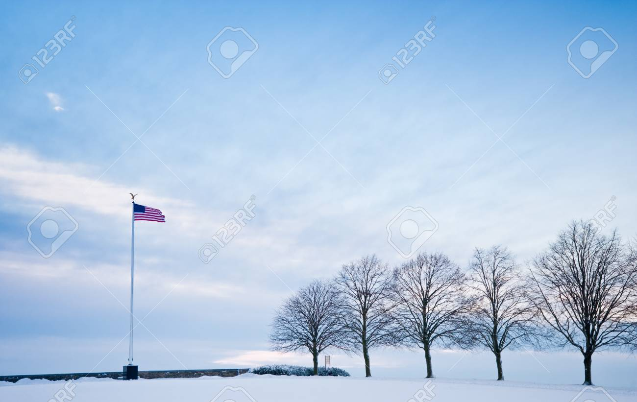 Winter outdoor - 8600148