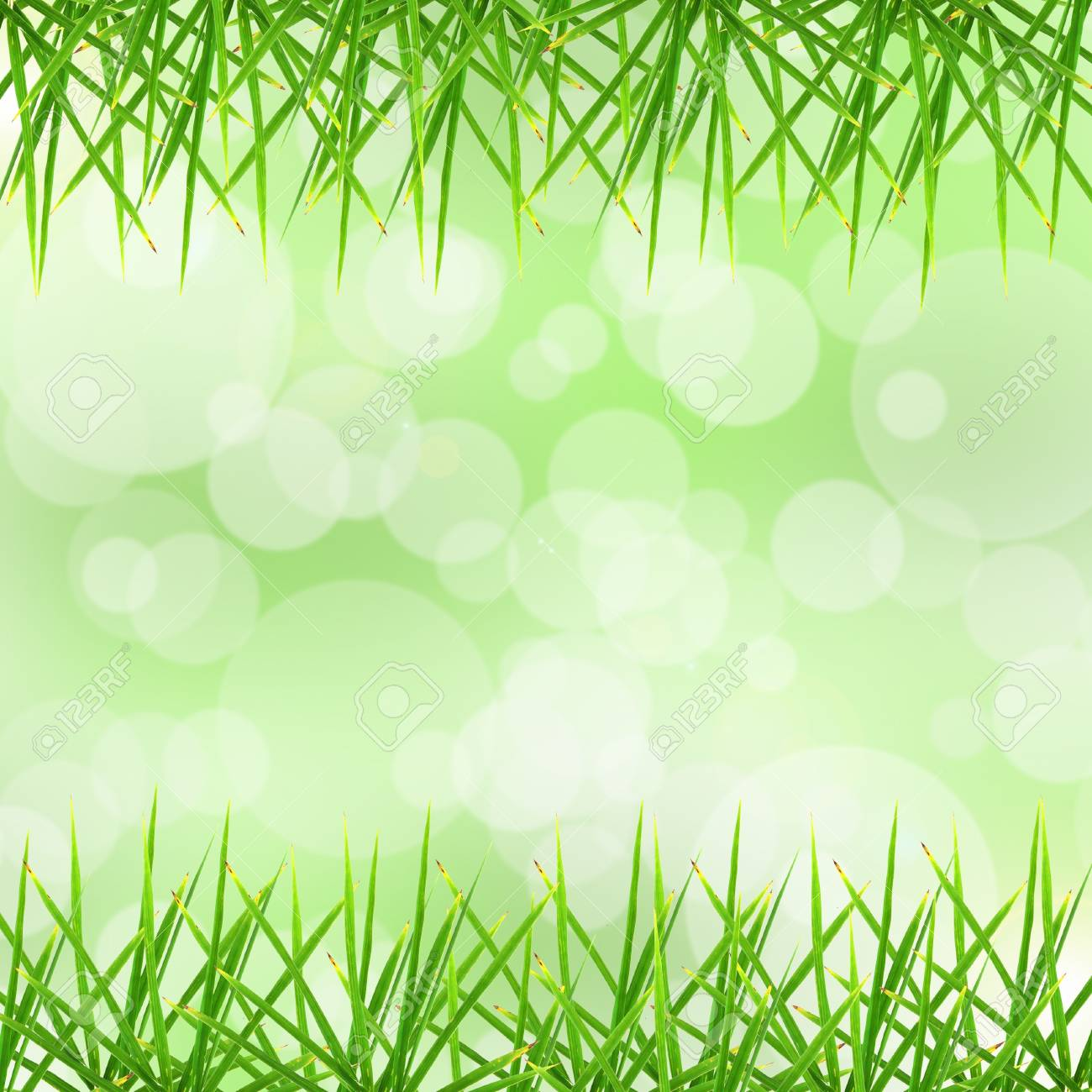 Leaf and bokeh background Stock Photo - 14580168