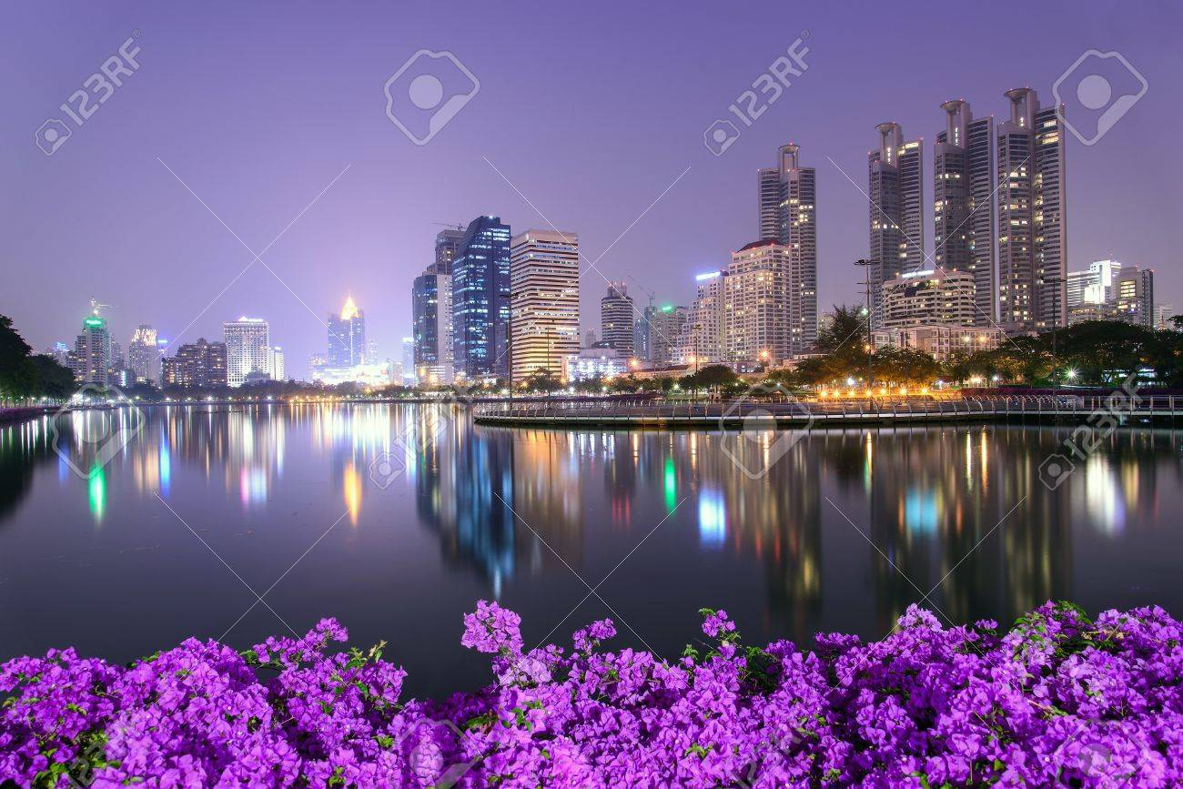 Bangkok city downtown at night with Bougainvillea flower foreground Stock Photo - 18371234