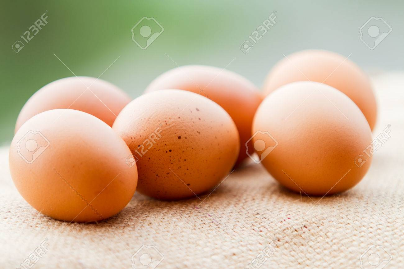 Egg Stock Photo - 23720924