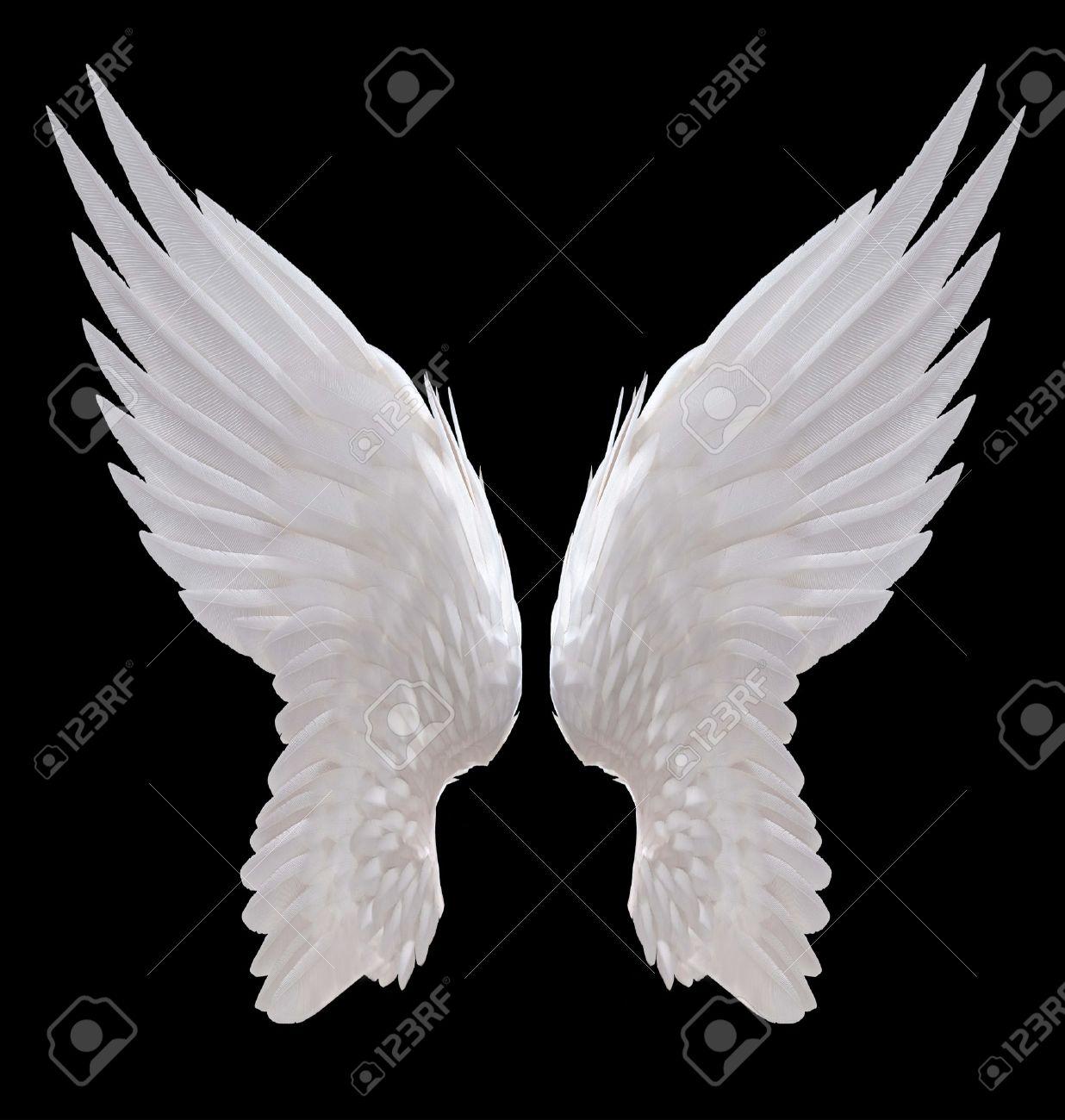 Angel Angel new foto