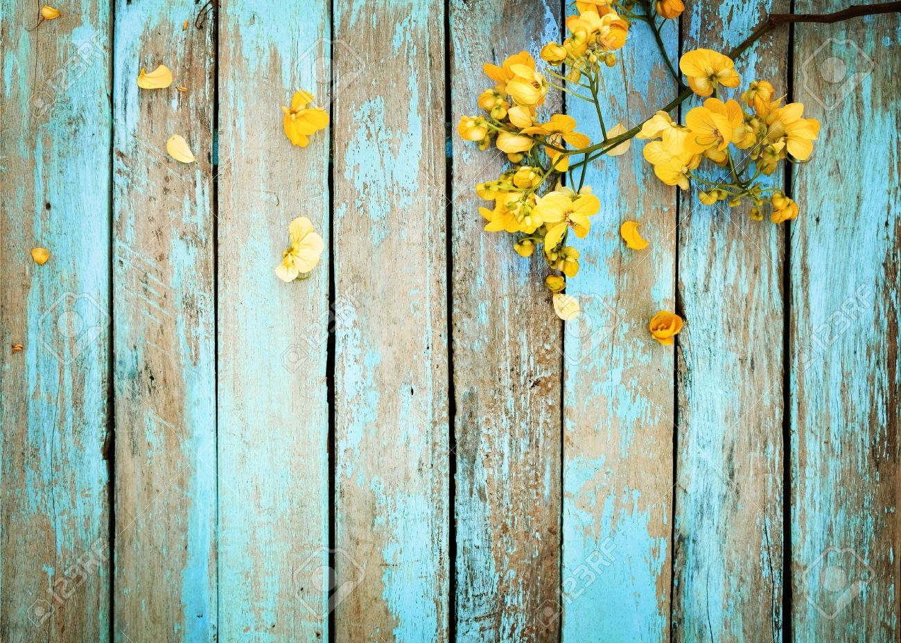Yellow flowers on vintage wooden background border design vintage stock photo yellow flowers on vintage wooden background border design vintage color tone concept flower of spring or summer background mightylinksfo