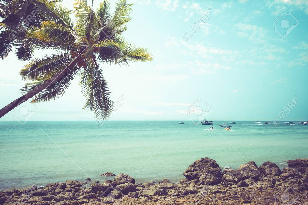 Vintage Tropical Beach (seascape) With Palm Tree In Summer ...