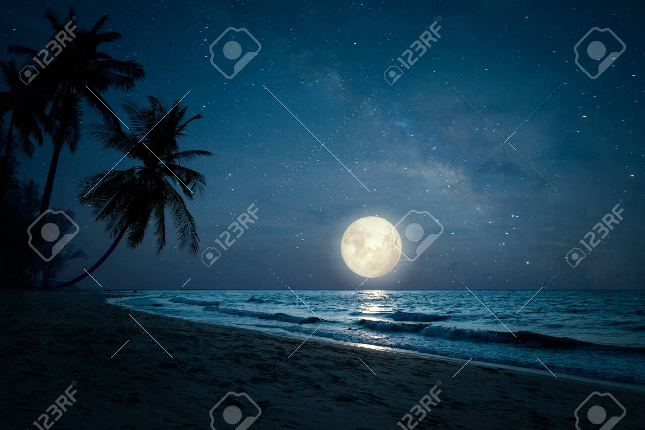 Beautiful fantasy of landscape tropical beach with silhouette palm tree in night skies and full moon - dreamlike wonder nature. - 125946181