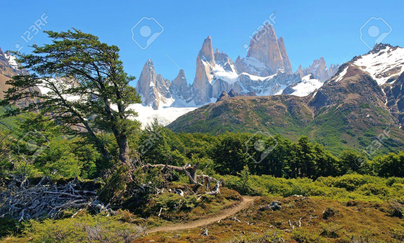 beautiful nature landscape in patagonia Stock Photo - 9849040