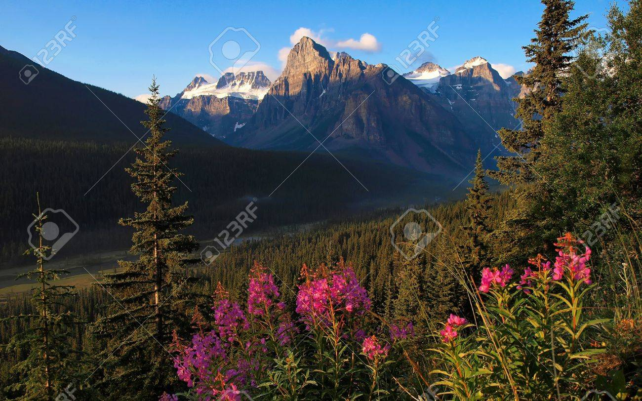Beautiful nature landscape at dawn as seen in Alberta, Canada Stock Photo - 11644967