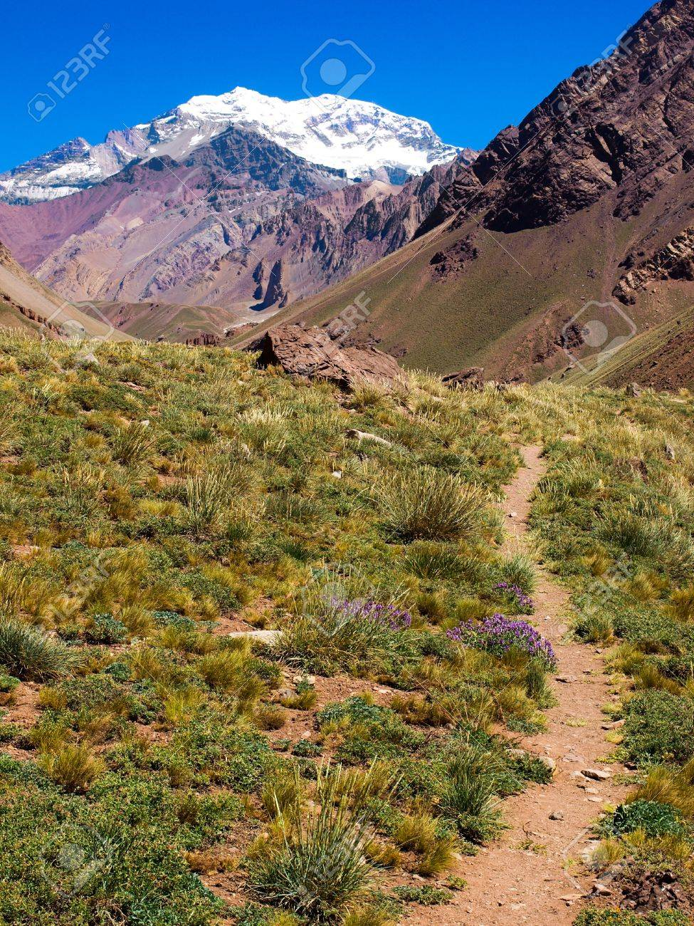 Hiking path with Aconcagua in the background as seen in Aconcagua National Park, Argentina Stock Photo - 11644978
