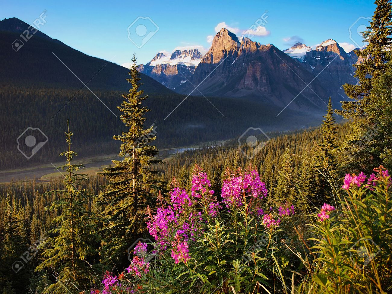 Beautiful landscape with Rocky Mountains at sunset in Banff National Park, Alberta, Canada Stock Photo - 17330586