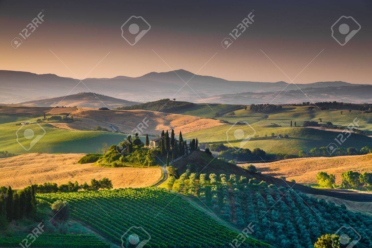 Scenic Tuscany landscape with rolling hills and valleys in golden morning light, Val d'Orcia, Italy - 44104774