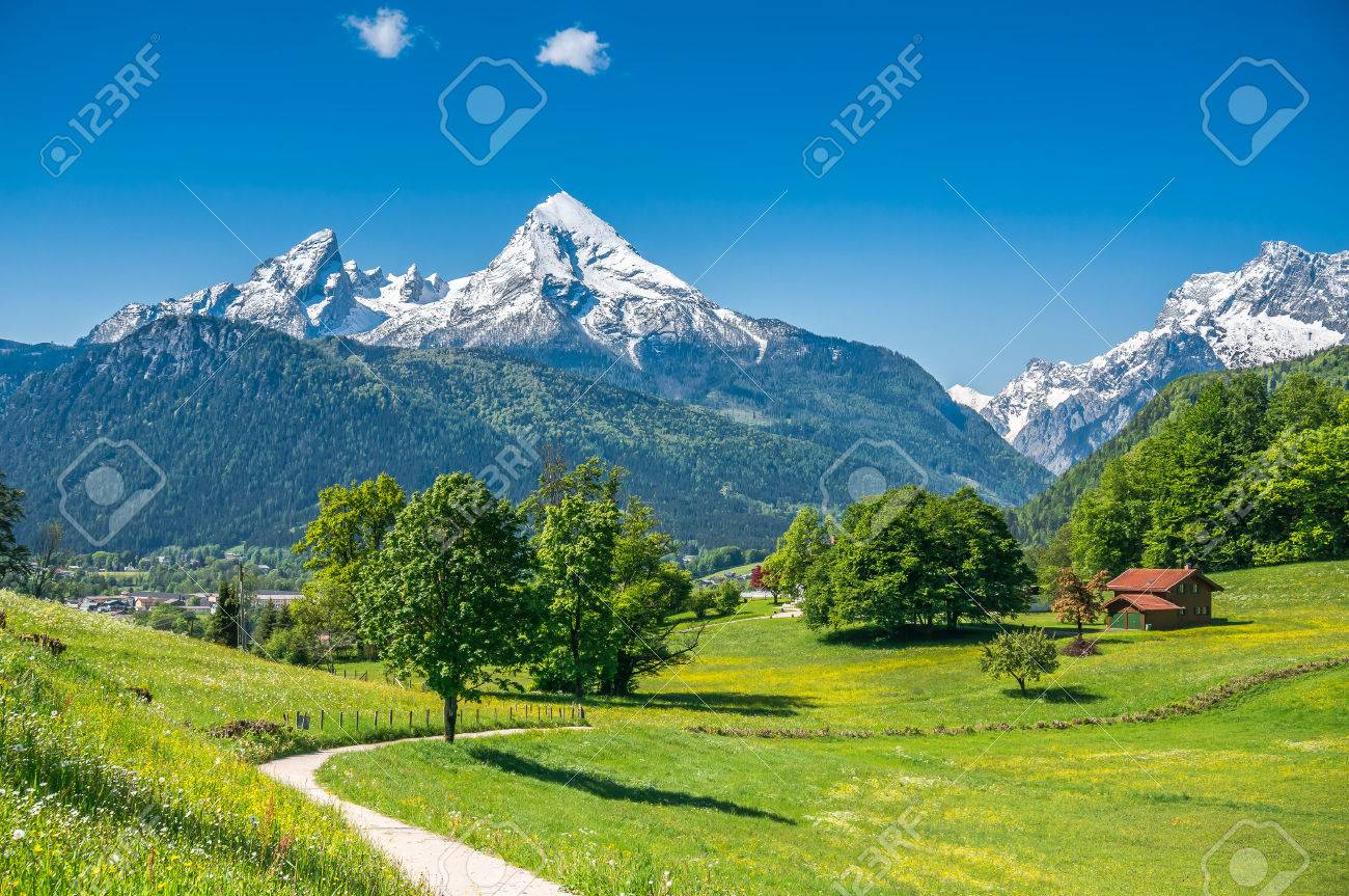 Idyllic summer landscape in the Alps with fresh green mountain pastures and snow-capped mountain tops in the background, Nationalpark Berchtesgadener Land, Bavaria, Germany Stock Photo - 45912506