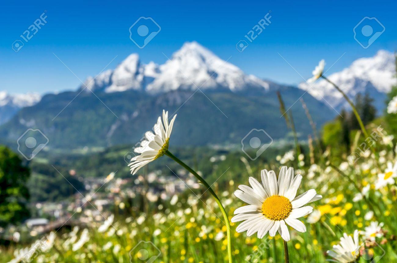 Künstlerische Ansicht Der Landschaft In Den Bayerischen Alpen Mit ...