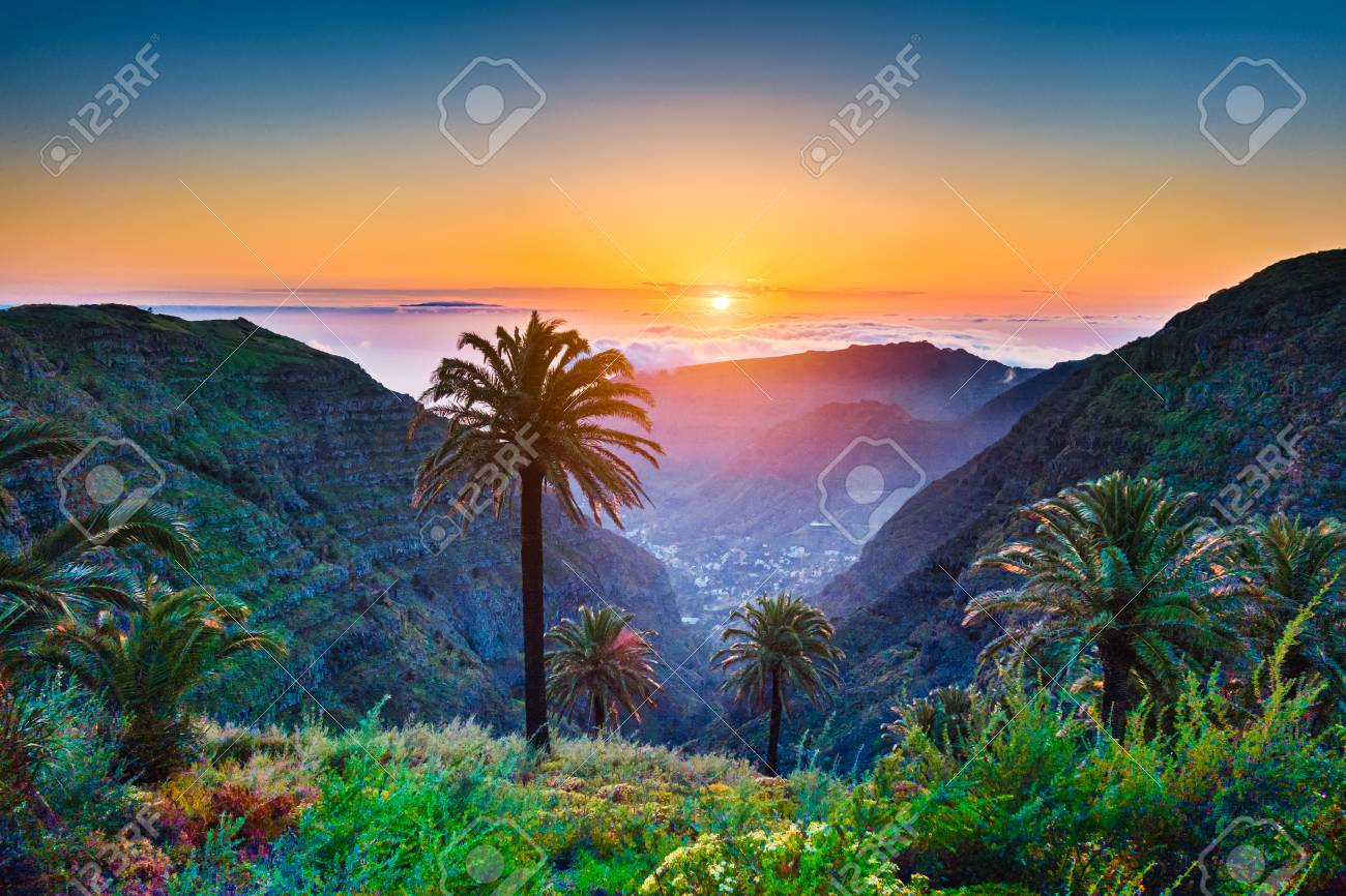 Beautiful view of amazing tropical scenery with exotic palm trees and mountain valleys above wide open sea in golden evening light at sunset with blue sky and clouds in summer, Canary Islands, Spain - 75470119