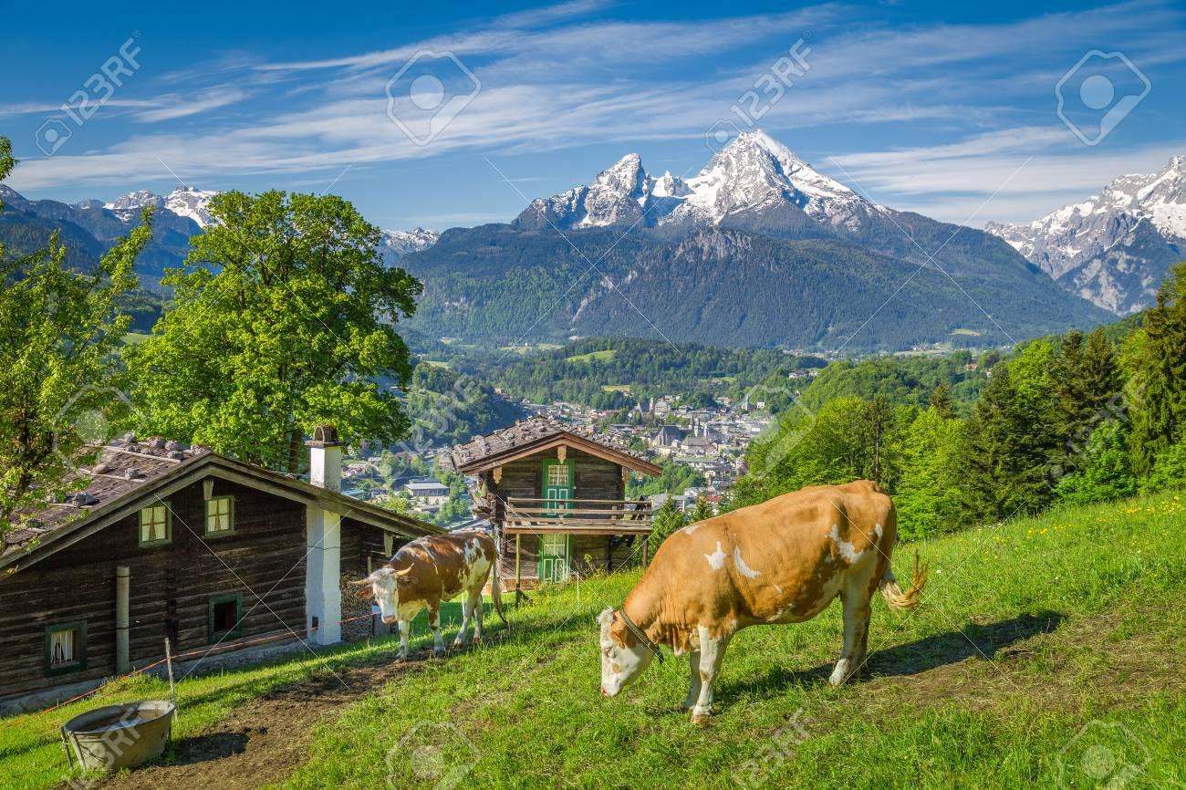 Beautiful panoramic view of idyllic alpine scenery with traditional
