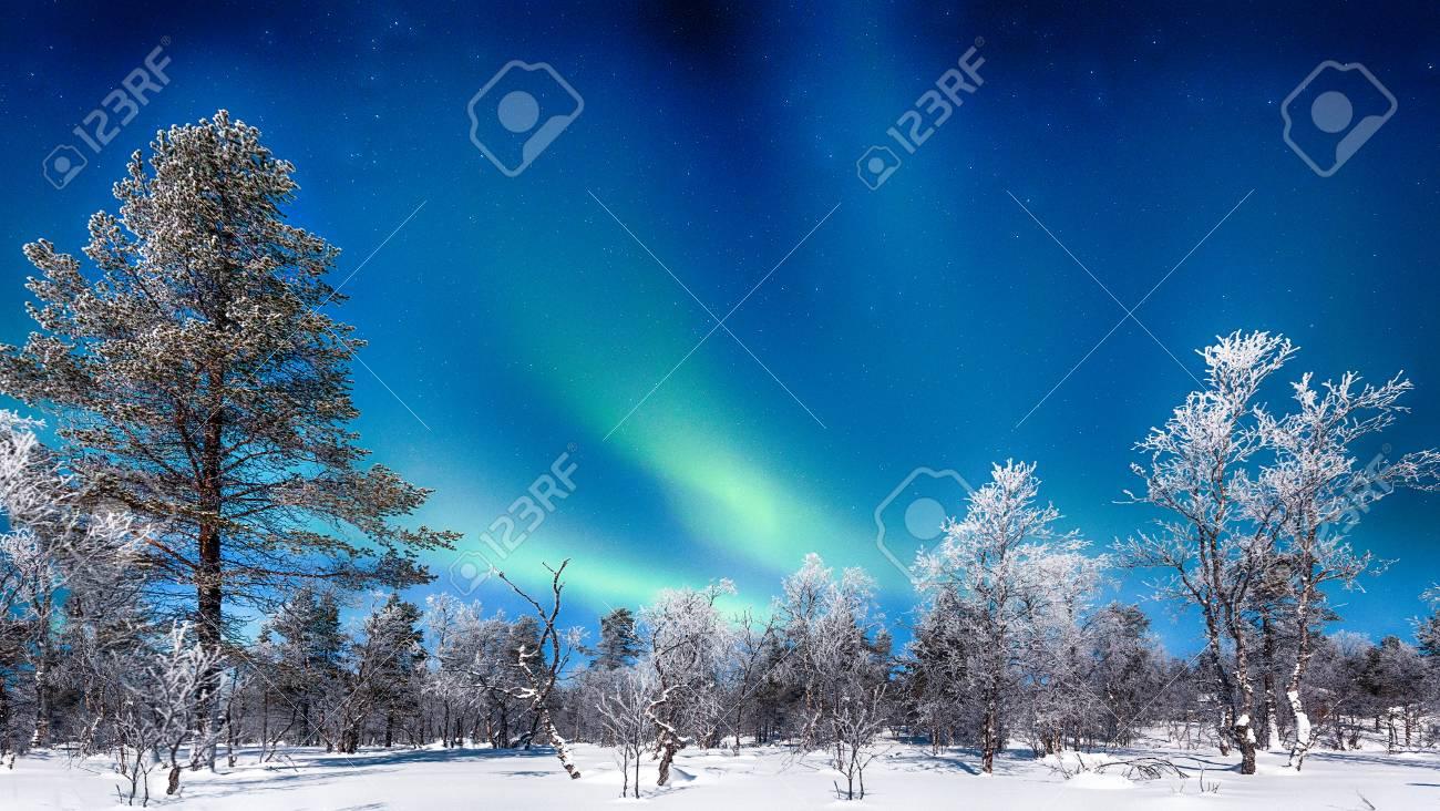 Panoramic view of amazing Aurora Borealis northern lights over beautiful winter wonderland scenery - 114002134