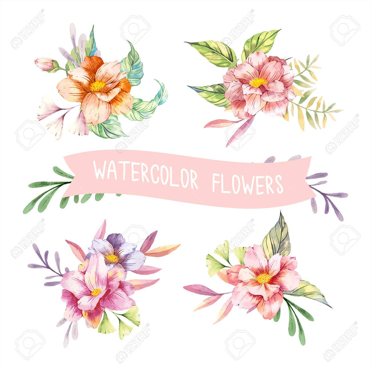 Watercolor Spring Flowers Royalty Free Cliparts Vectors And Stock