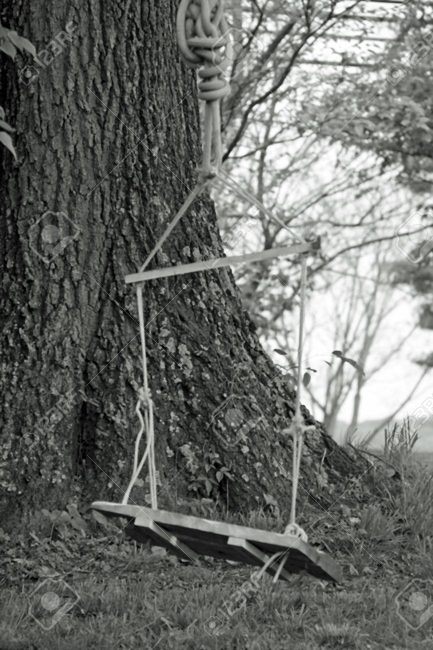 casero columpio atado al rbol con una cuerda con asiento de madera tomadas en blanco y