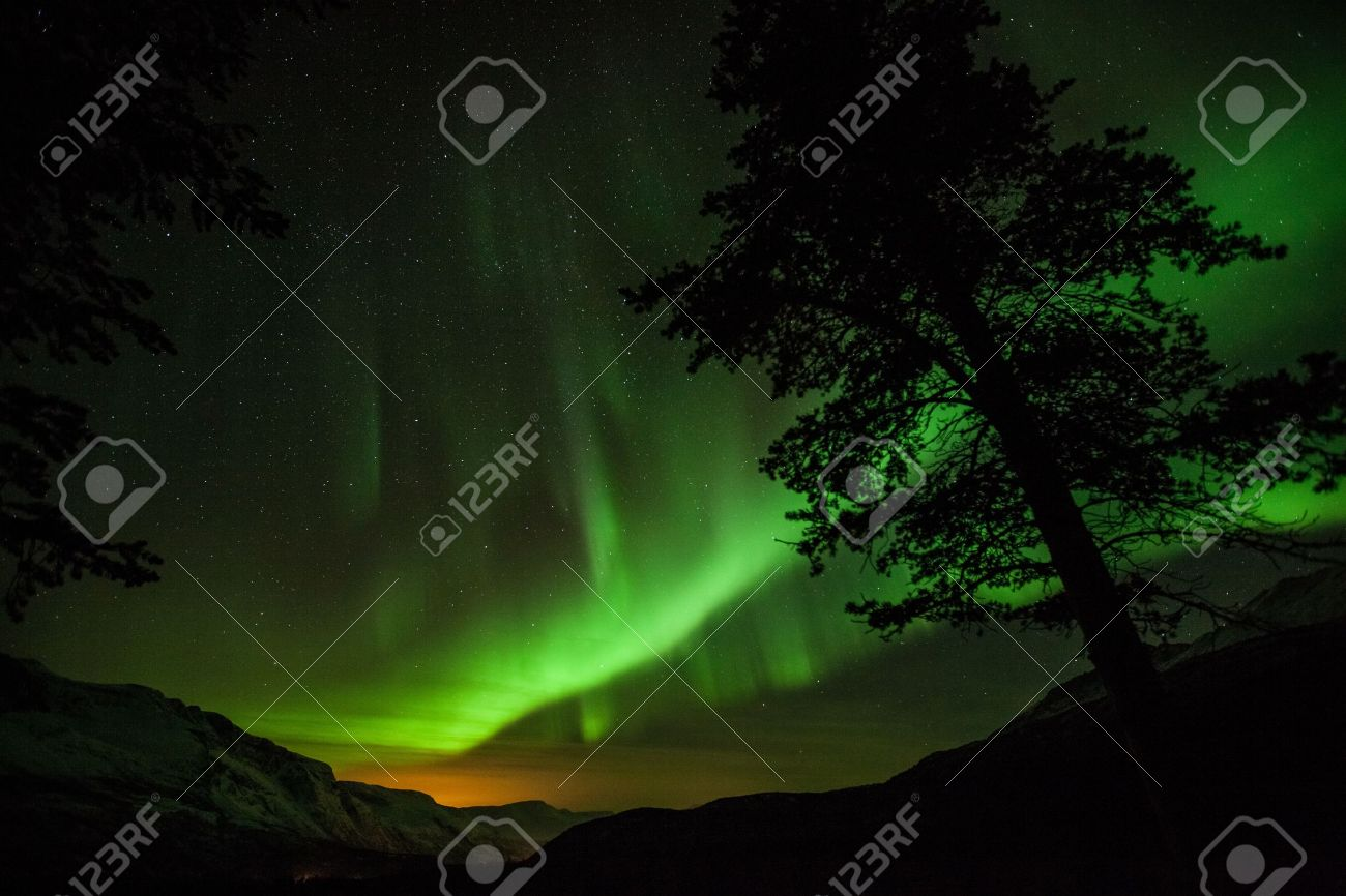 Northern Lights Above A Forest In Sweden Stock Photo, Picture And ...