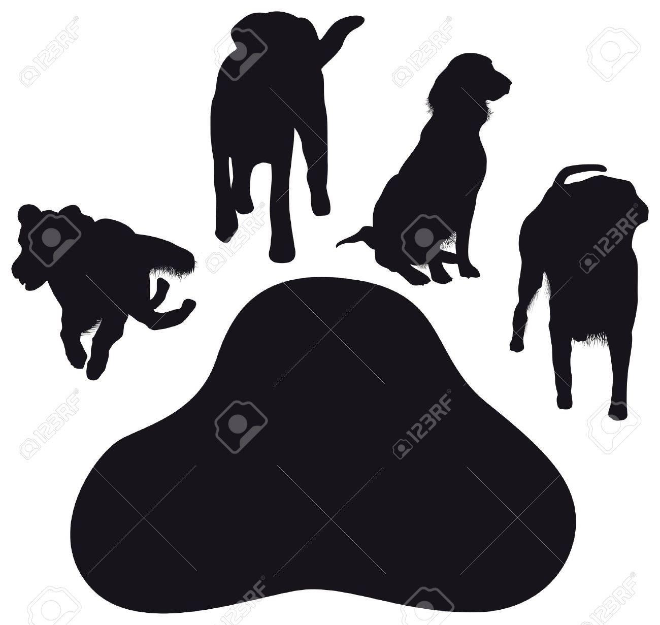 dog paws Stock Vector - 15809527