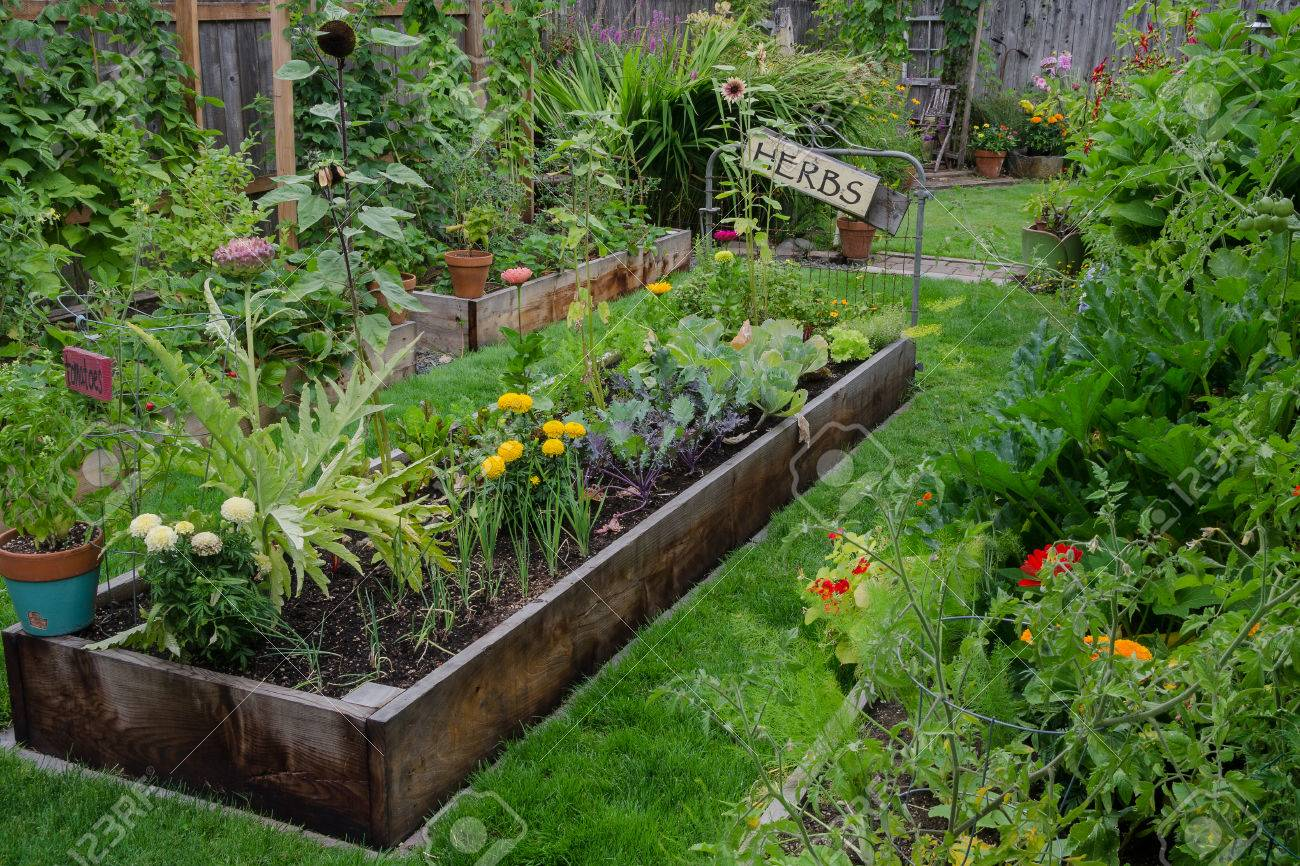 A Raised Bed Filled With Herbs And Vegetables Is Nestled In The