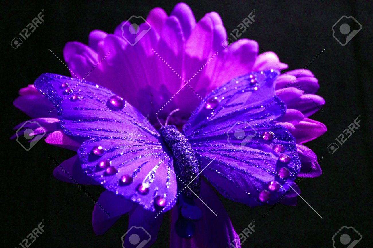 purple butterfly and flowers