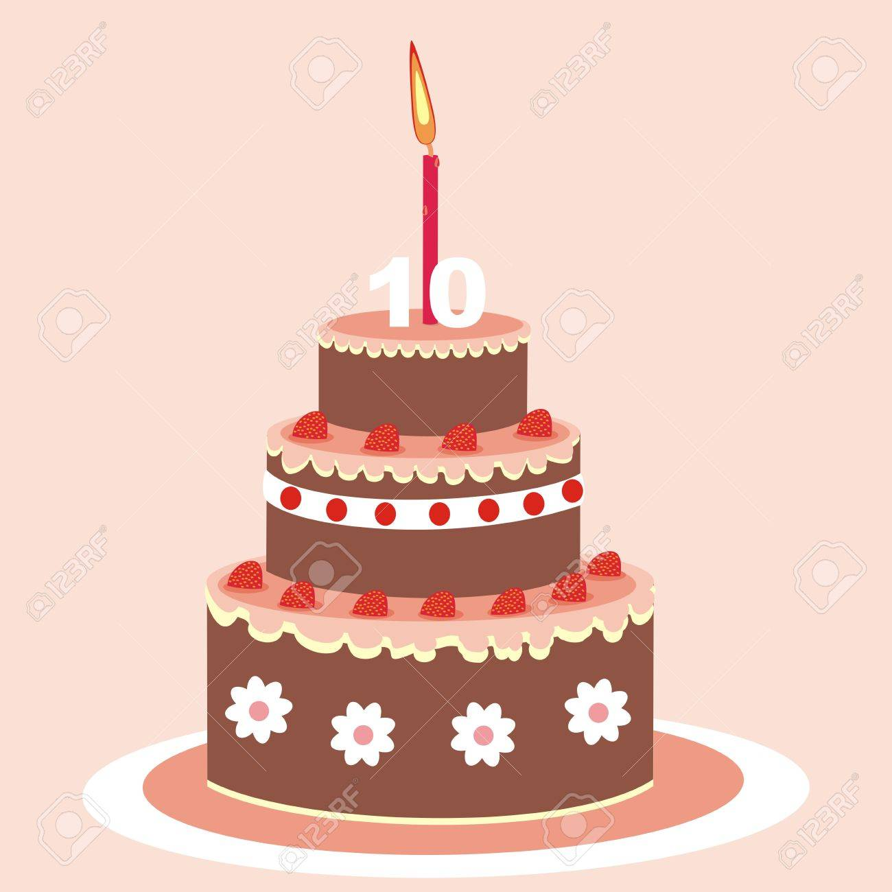Birthday Cake With Candle Chocolate Cake With Fruit Vector