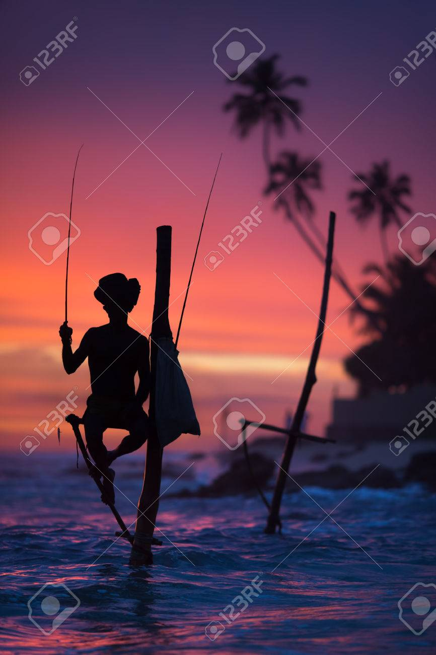 Sri Lanka's Stilt Fisherman. Fishing on stilt is very common in many Asian countries, but most of all - in Sri Lanka, in the Ahangama village. - 81999977