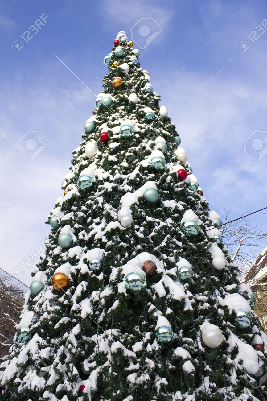 large christmas tree decorated with balls and covered with snow stock photo 11430365 - Large Christmas Tree