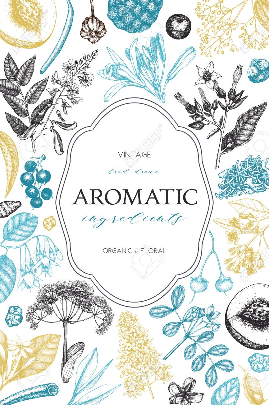 Aromatic and medicinal plant design. - 75400465