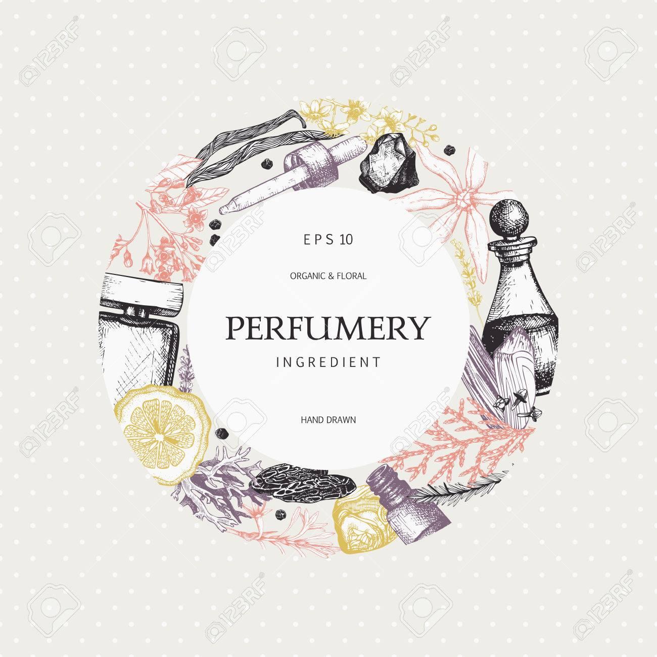 Vintage perfumery and cosmetics illustrations set - 77035384