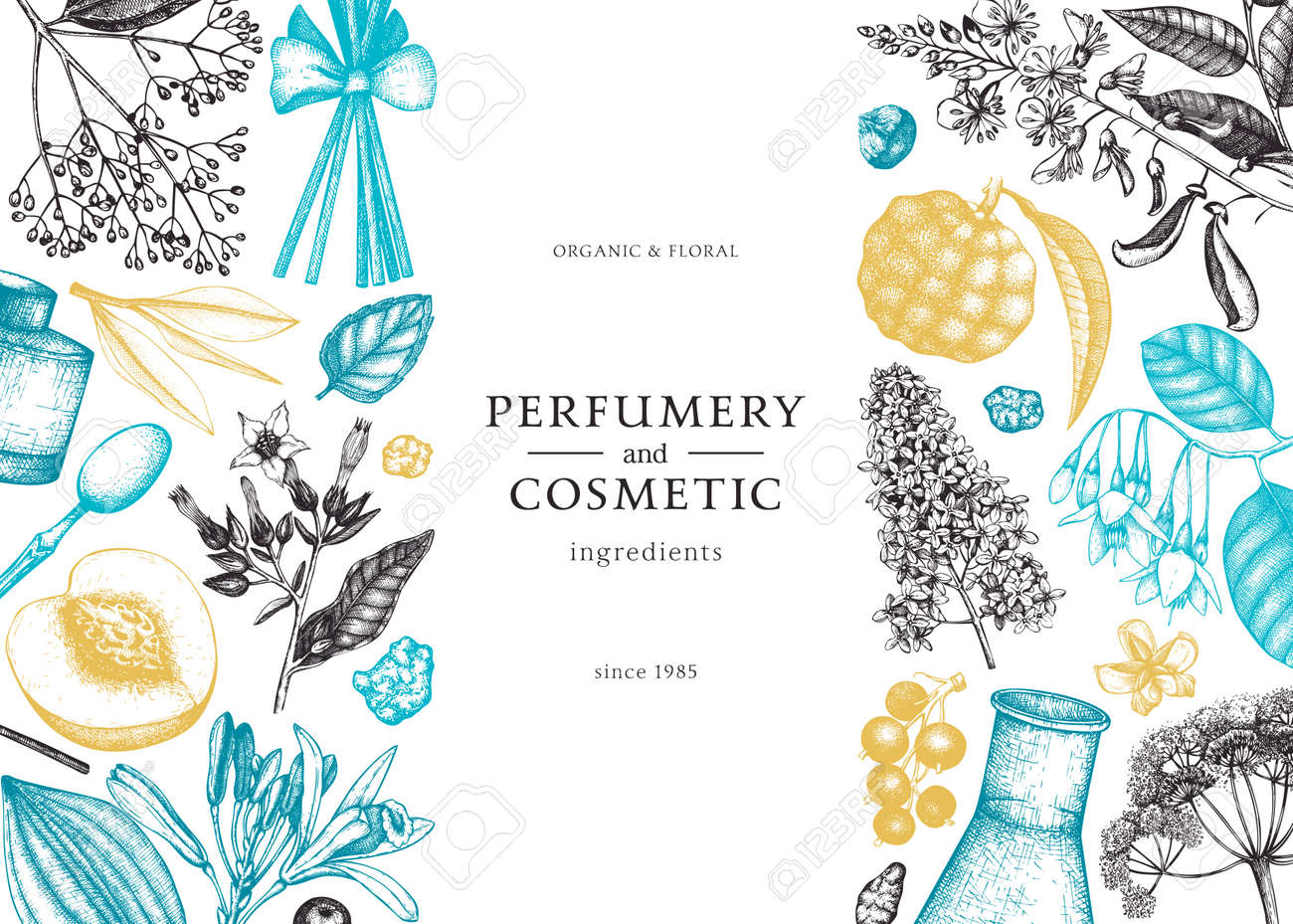 Vector background with fragrant fruits sketched perfumery and cosmetics ingredients illustration. Aromatic and medicinal plants banner design. Botanical template in colors - 170065684