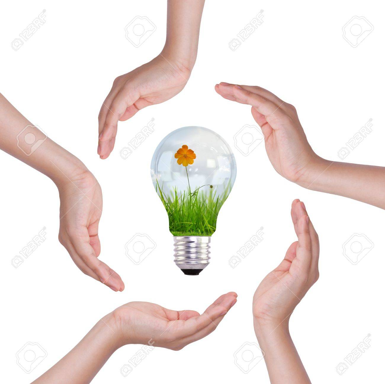 Light bulb in hand (light bulb with beautiful flower inside) Stock Photo - 11193355