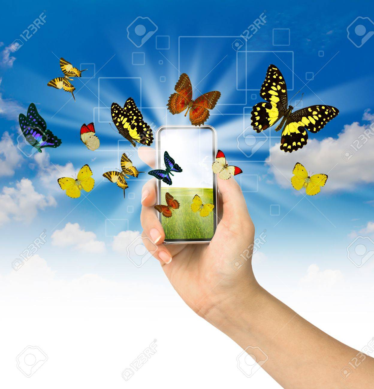Butterfly reaches out of phone Stock Photo - 13638747