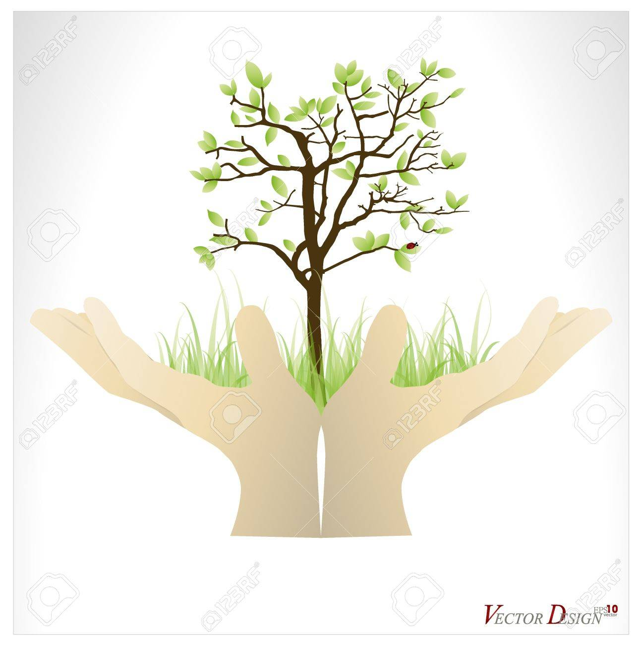 Hand holding a tree that show the growth your business. Stock Vector - 14238233