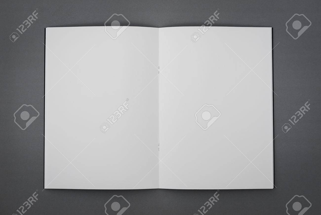Blank catalog, brochure, magazines, book mock up - 42940918