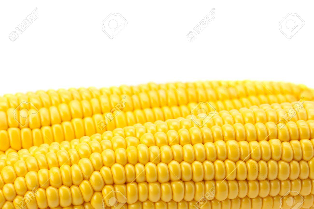 Corn is isolated on a white - 7778875
