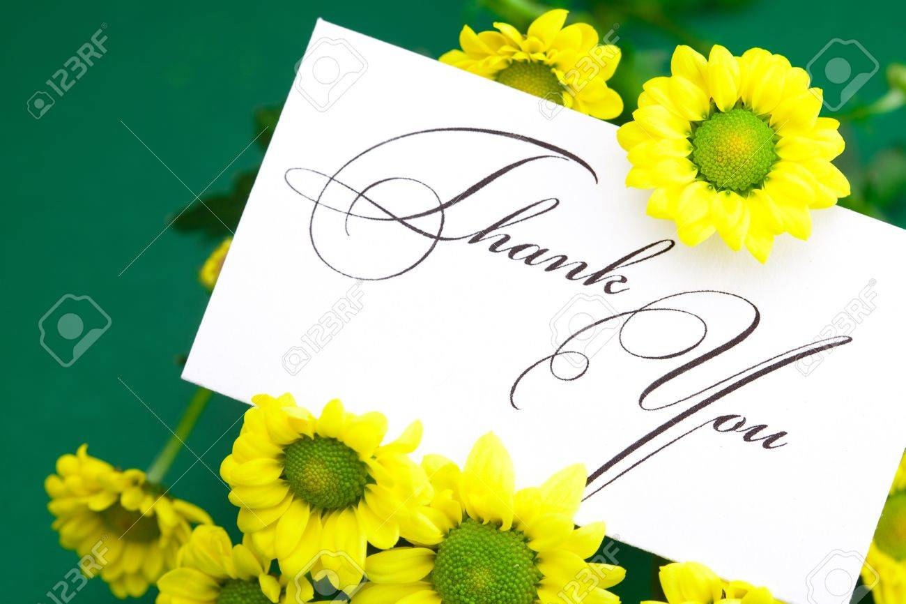 yellow daisy and card signed thank you on green background - 9278344