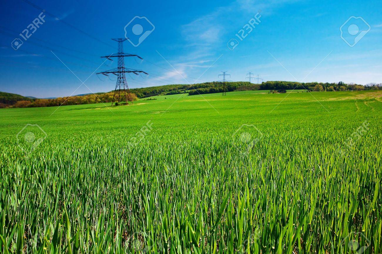 meadow and power line against the blue sky - 9880215
