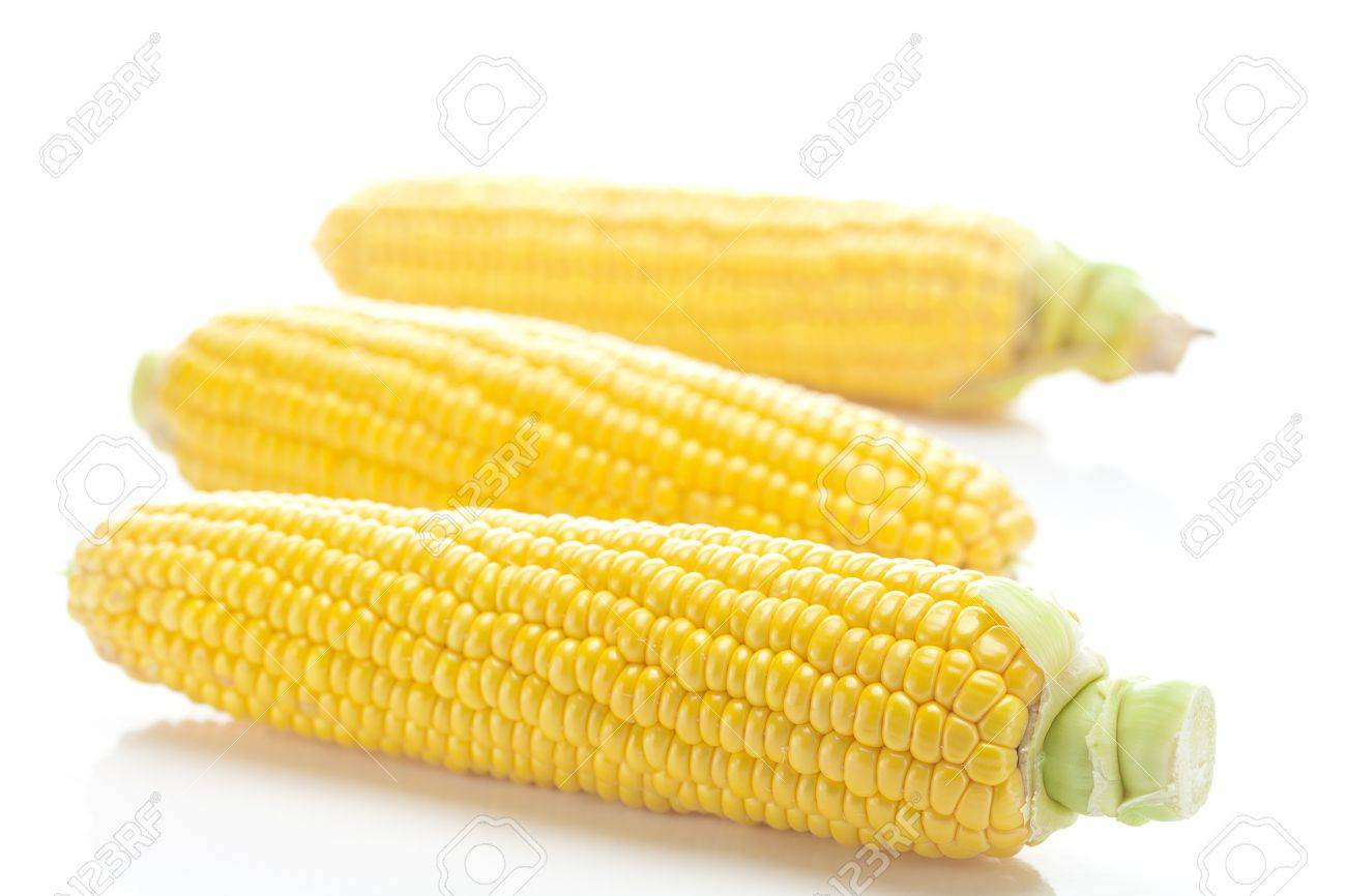 ripe yellow corn isolated on white - 11712487