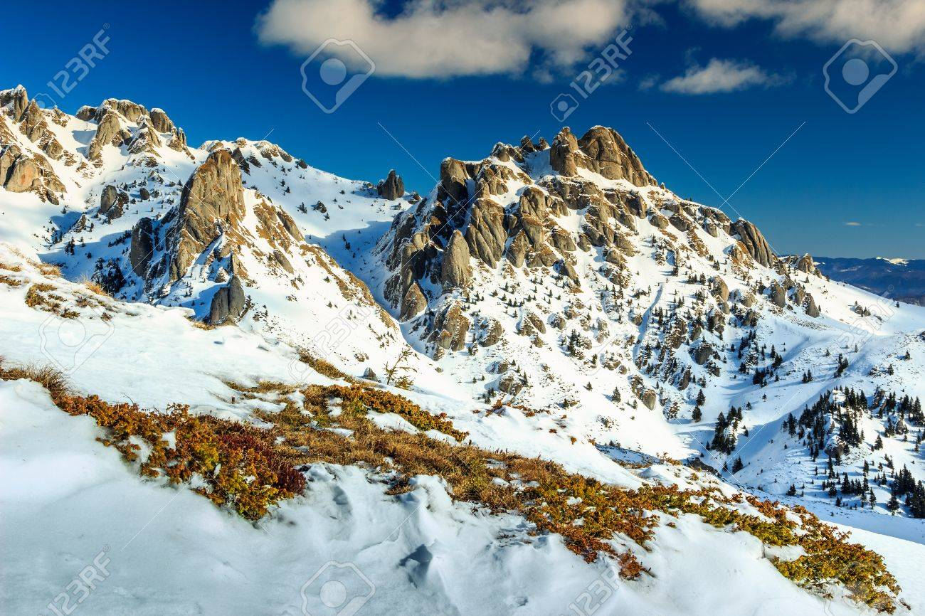 Beautiful Sunny Winter Landscape And Snowy MountainsCiucas Mountains CarpathiansTransylvaniaRomania