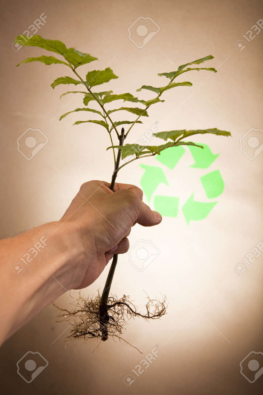 Recycling sign with images of nature Stock Photo - 10078798