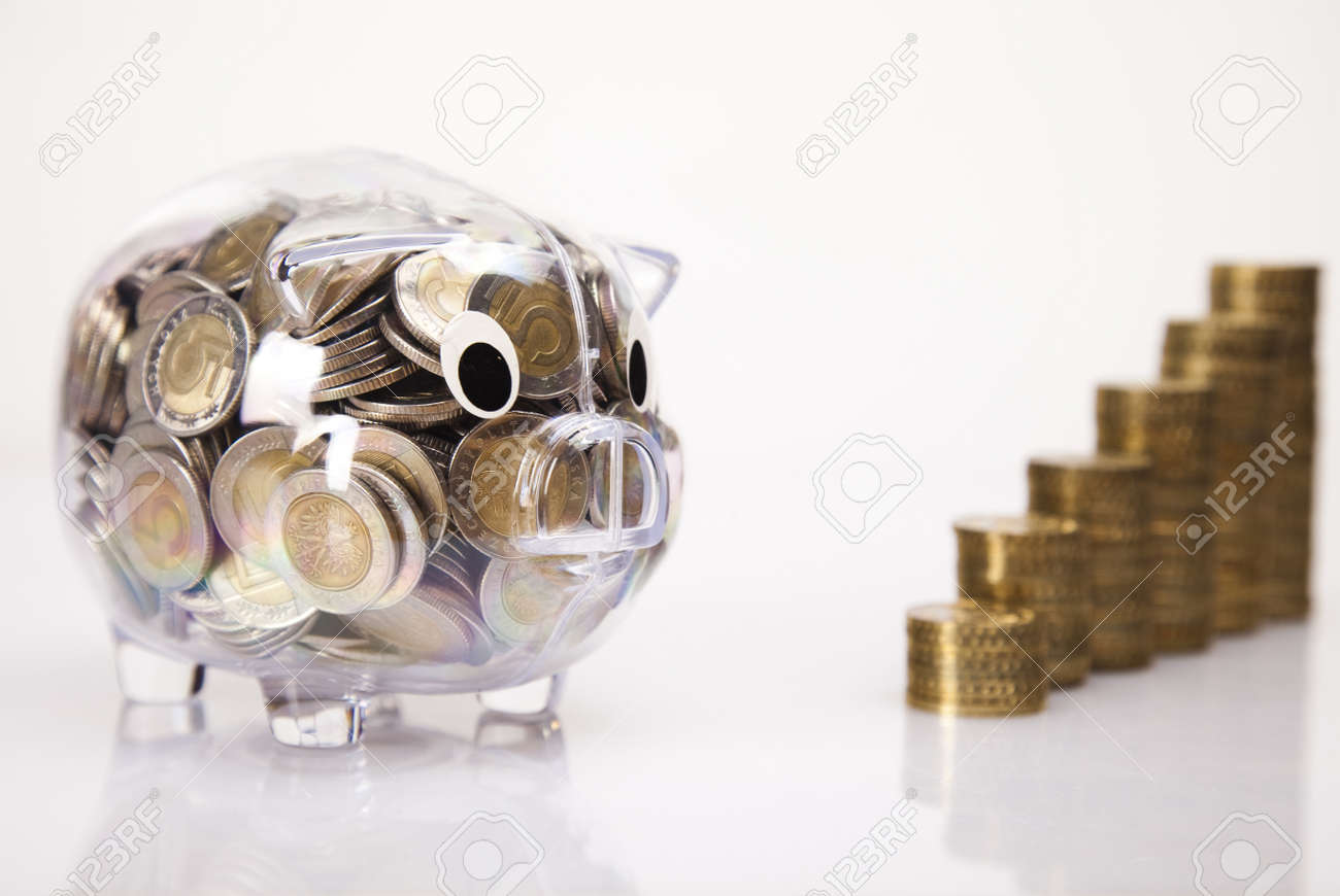 Pig bank and money Stock Photo - 17875523