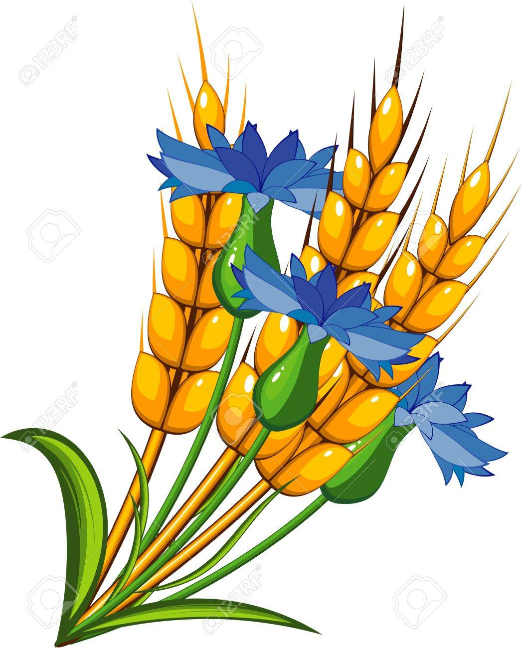 Wheat with cornflowers Stock Vector - 7144048