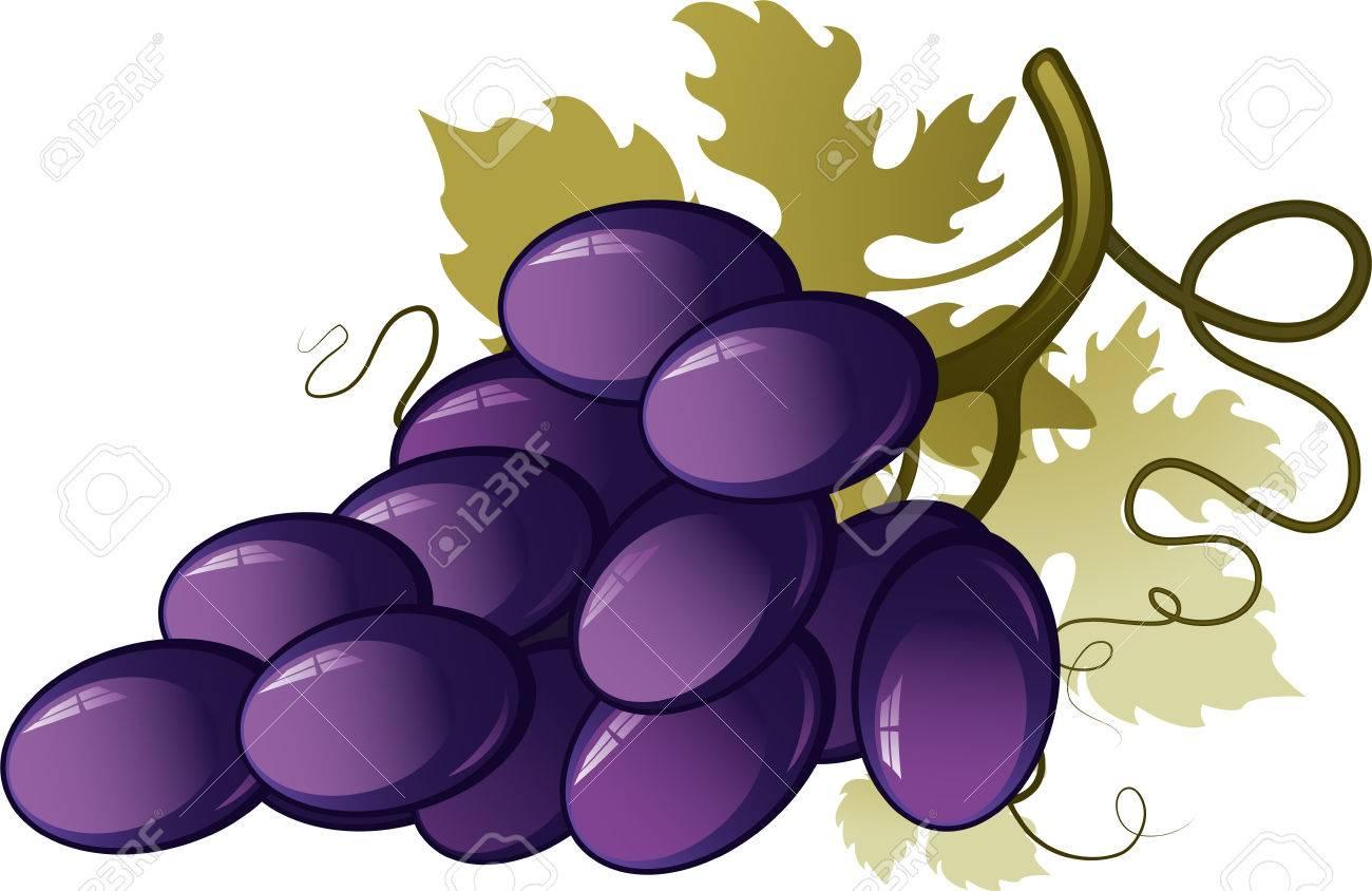 Grape - 7833124