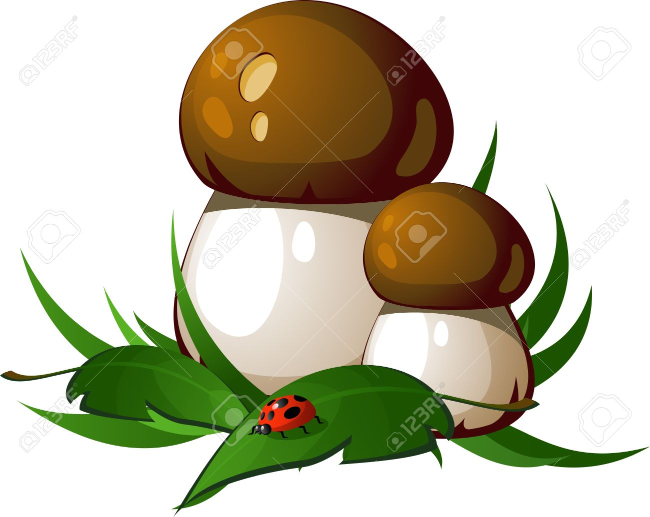 Ceps in the grass. EPS8 Stock Vector - 7938110