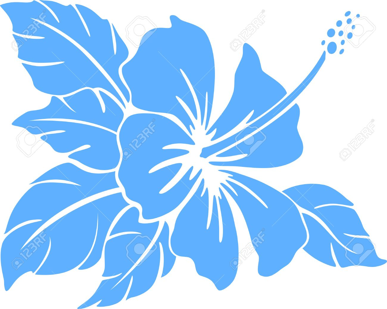 Hibiscus Flower Silhouette On A White Background Royalty Free