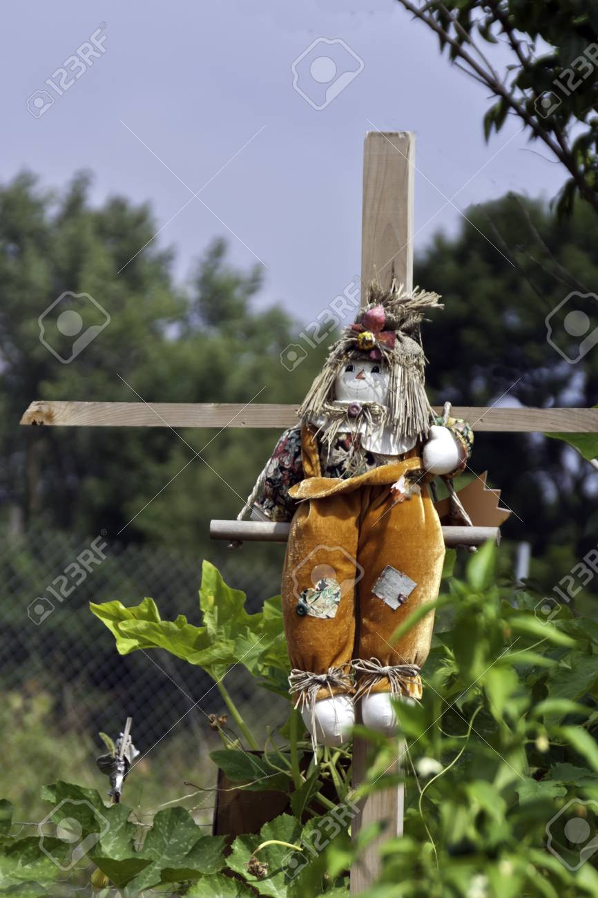 a scarecrow on wooden crossbars in a city garden patch stock photo