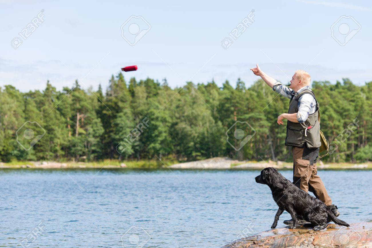 Man train his retriever by throwing a dummy Stock Photo - 15196564
