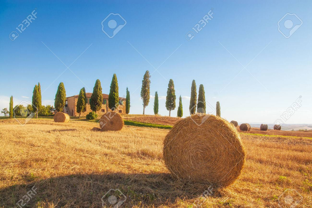 Spectacular views of the Tuscan landscape, Pienza, Italy - 29967246