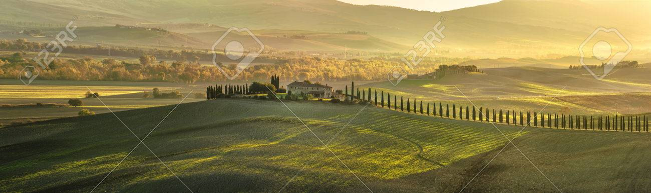 Panoramic view of Tuscan house with cypress trees along the road - 33095441