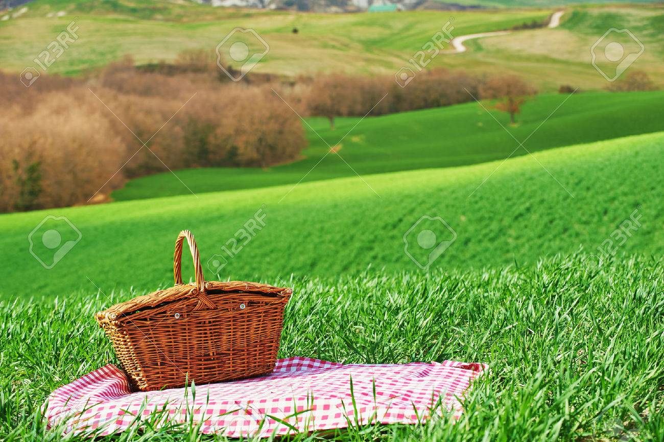 Tuscan picnic on the green spring grass with landscape in the background - 38485709